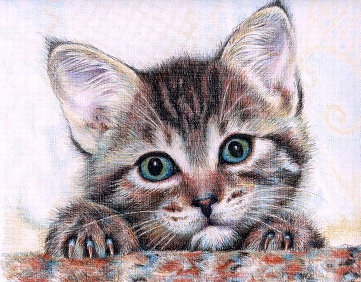 Использование цветных карандашей для рисования кошек