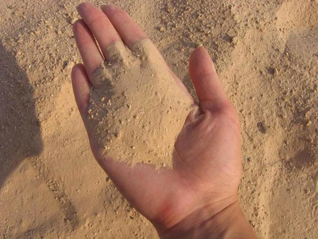 Мех бобра чистят при помощи сухого горячего песка