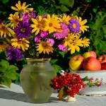 Фото 17: Рудбекия многолетняя в вазе