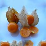 Фото 25: Физалис овощной и ягодный