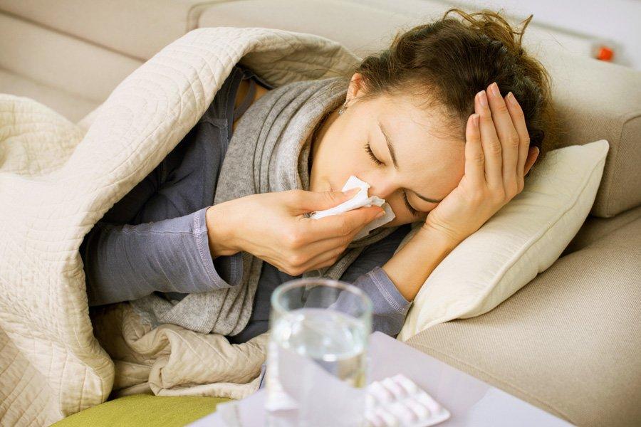 Польза кипрея при простуде