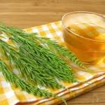 Чай хвоща полевого