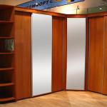 Фото 19: Шкаф с двумя дверями