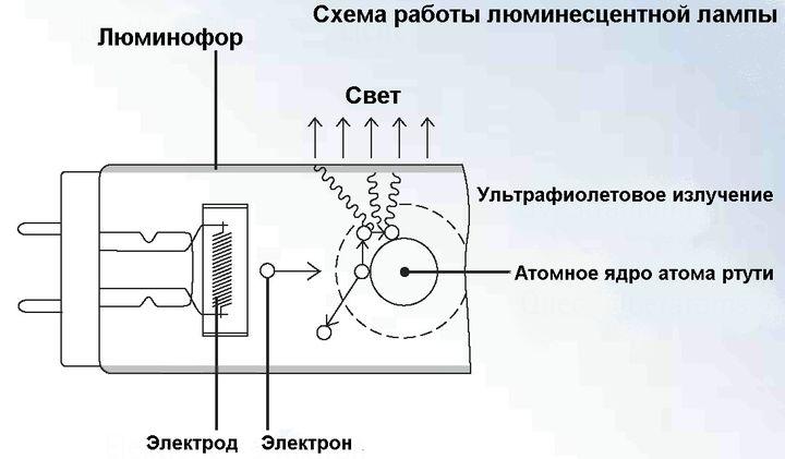 Принцип работы энергосберегающей лампы