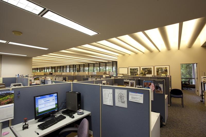 Офисное люминесцентное освещение