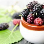 Плоды черной шелковицы