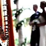 Фото 11: Музыка на свадьбе