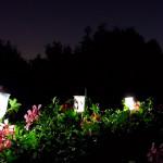 Фото 18: Солнечная подсветка сада