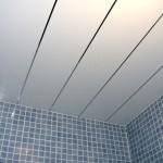 Фото 6: Пластиковые панели для ванной комнаты (7)