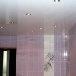 Фото 18: Пластиковые потолки в ванной (10)
