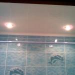 Фото 11: Пластиковые потолки в ванной (3)