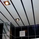 Фото 14: Пластиковые потолки в ванной (6)