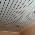 Фото 24: потолок из пластиковых панелей