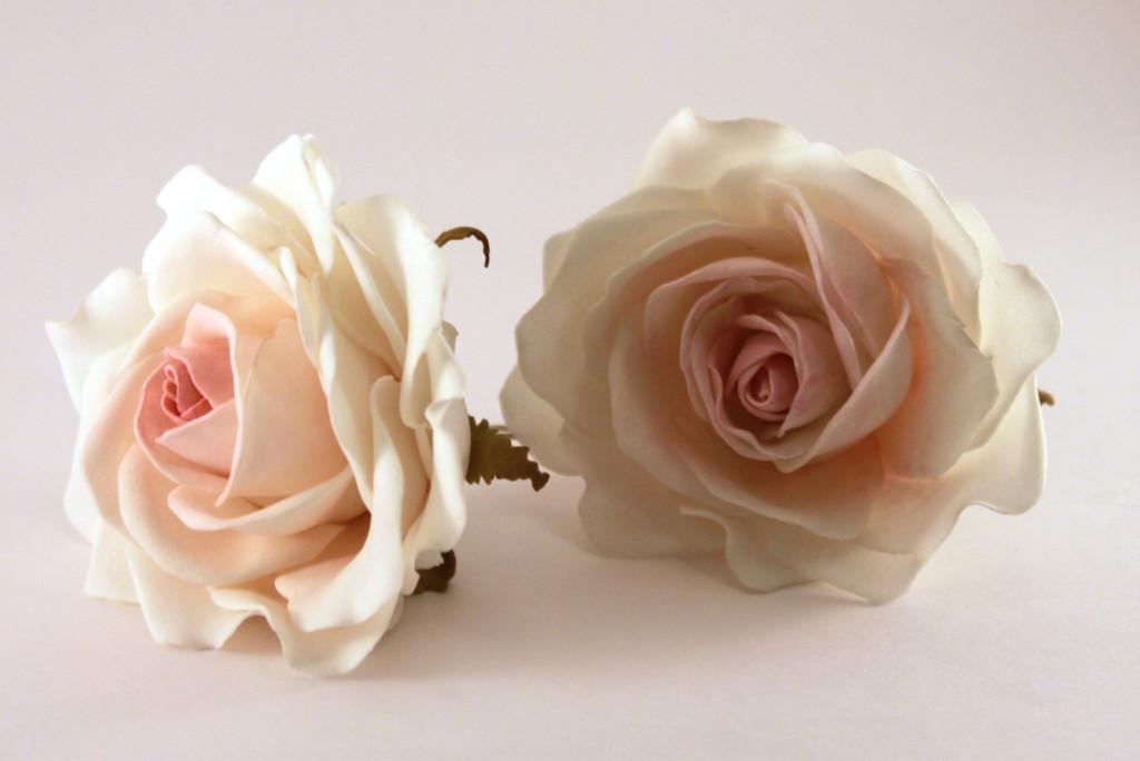 Королева сада – роза
