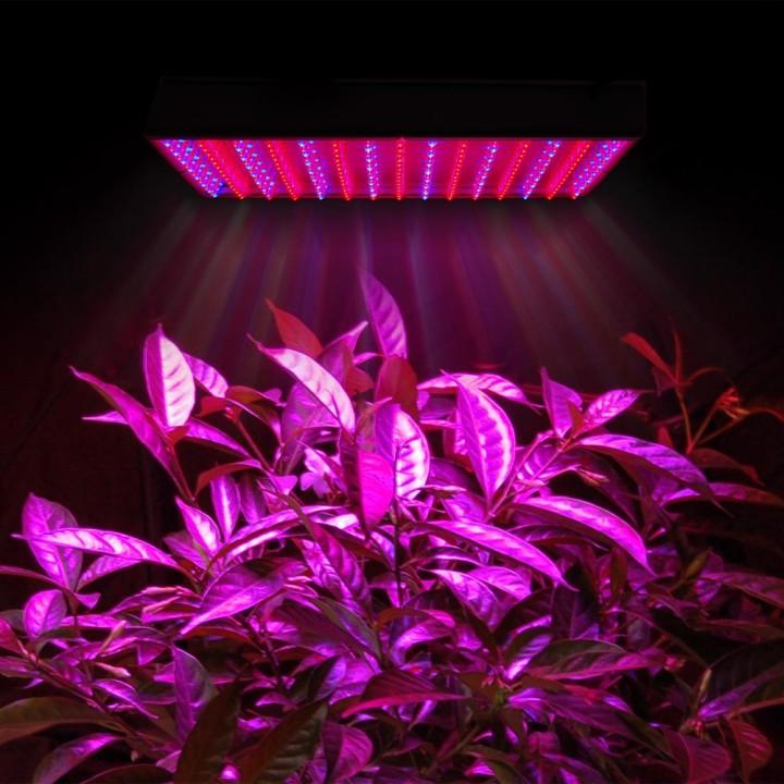 фитолампы лампы для растений