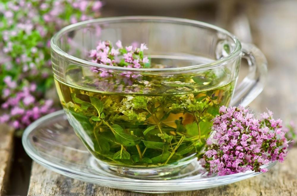 Растение применяют в виде чая