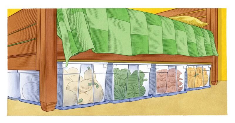 Фото 27: Хранение овощей в пластиковых контейнерах
