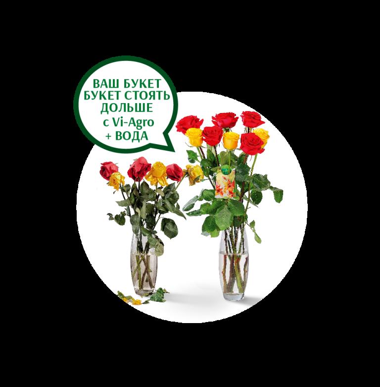 выбрать чтобы розы простояли дольше изготовим выполним