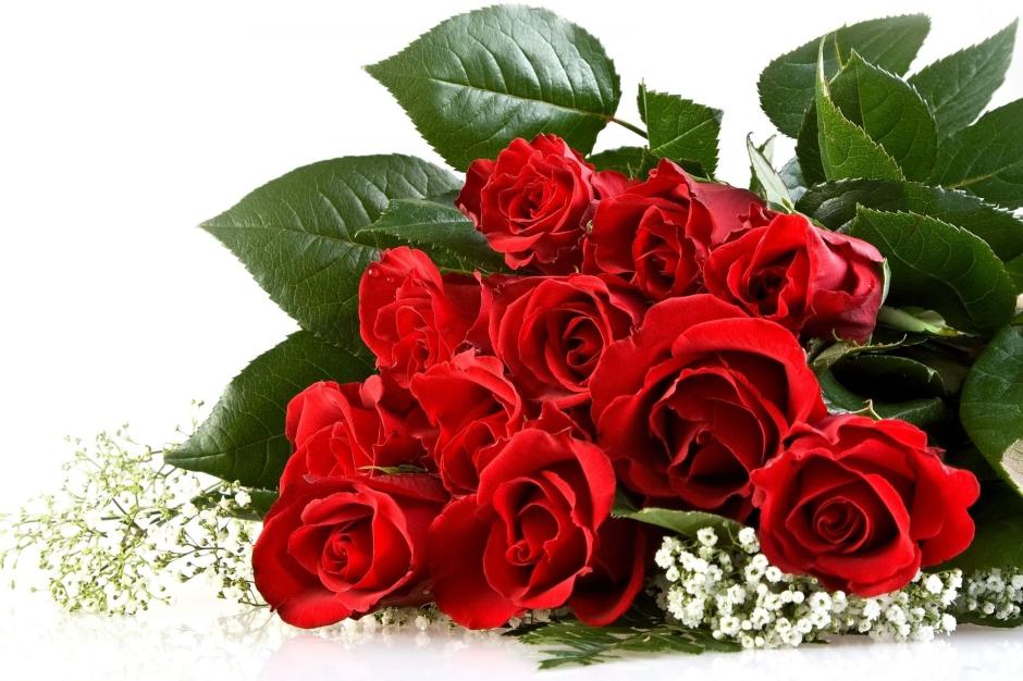 Фото 59: Красивые красные розы