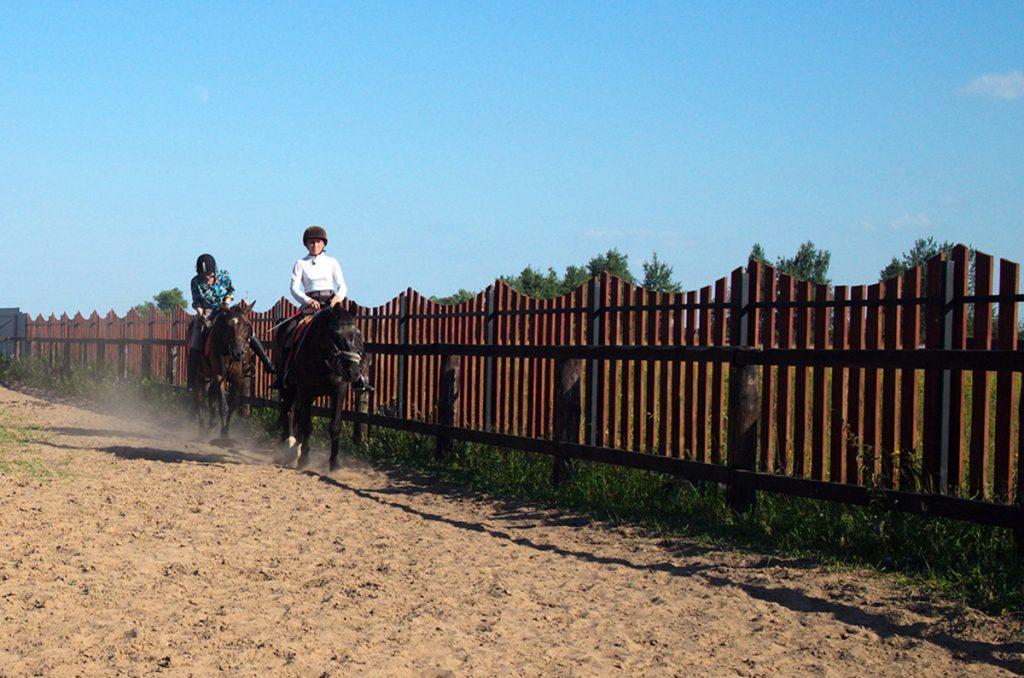 конно-спортивный комплекс Три жеребенка