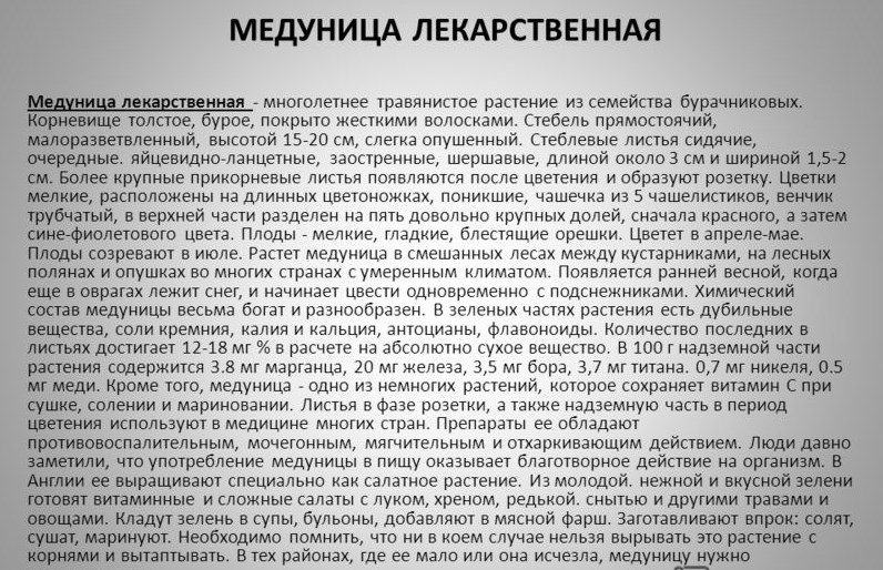 medunica lekarstvennaja (30409223)