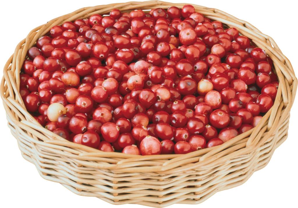 Корзина наполнена плодами боярышника