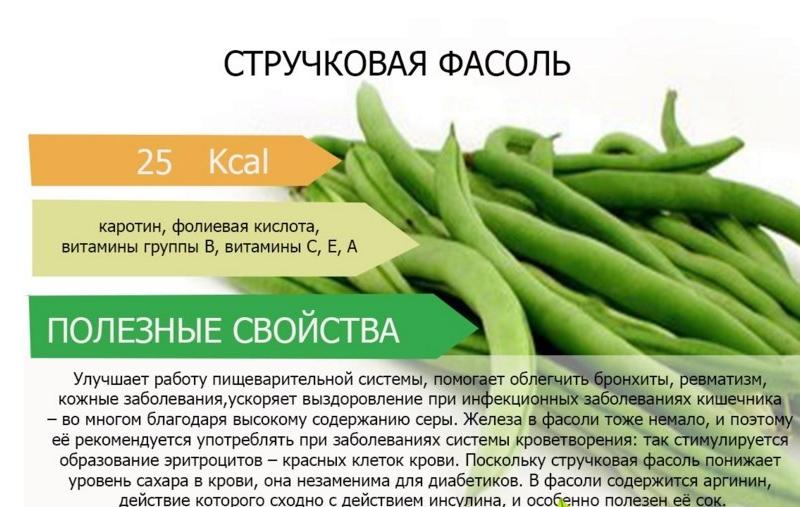 Полезный состав и свойства стручковой фасоли