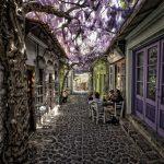 Фото 129: Тенистая аллея между домами при помощи вистерии