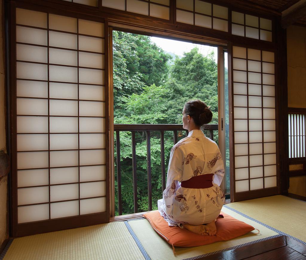 Японские раздвижные двери