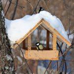 Фото 36: Домик для птичек