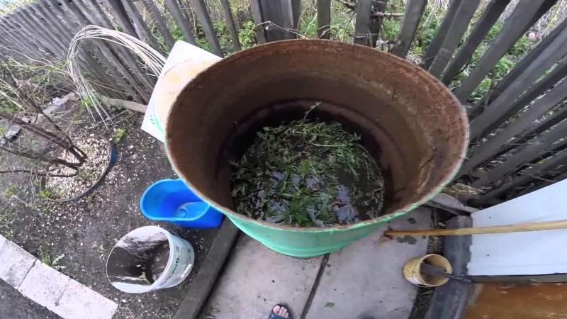 Фото 15: Удобрение из сорняков
