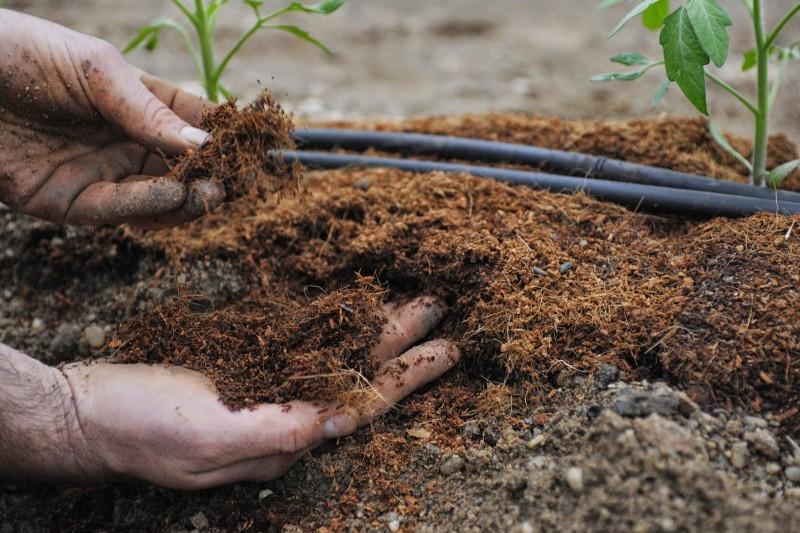 Фото 24: Органические удобрения