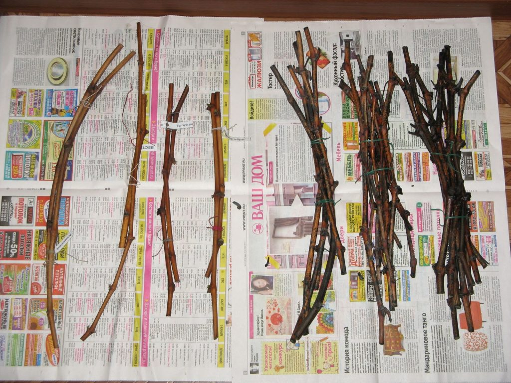 Обработка деревьев весной от вредителей и болезней самые