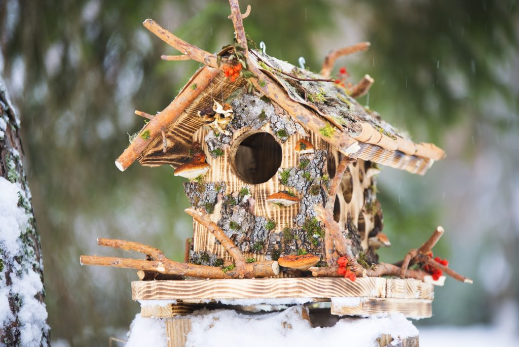 Кормушка–домик с корой