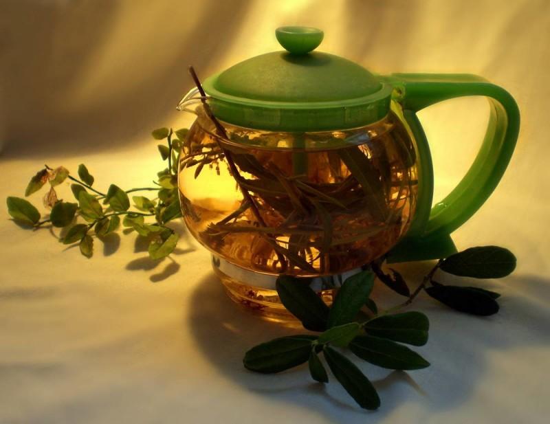 Чай с аралией