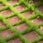 Фото 32: Расположение тротуарной плитки через небольшие промежутки