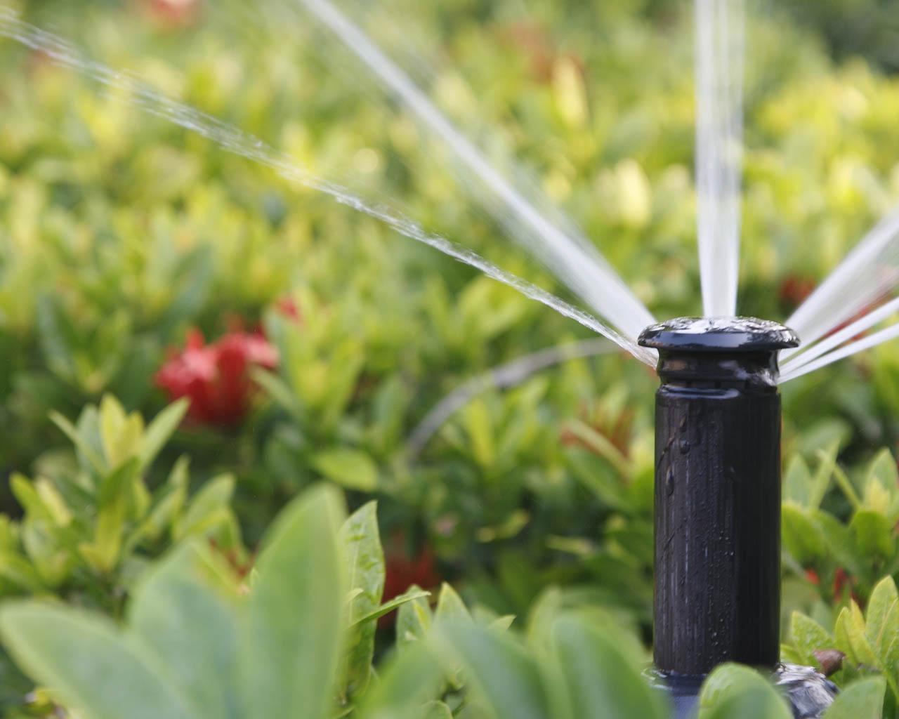 Автоматическая система полива растений
