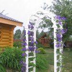 Фото 97: Пергола - арка деревянная