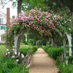 Фото 26: Пергола - арка для вьющихся растений