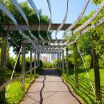 Фото 53: Металлическая пергола - туннель в современном стиле