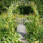 Фото 27: Пергола - арка в саду