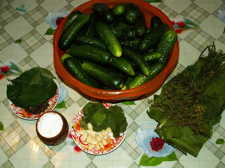 Огурцы и ингредиенты для засолки