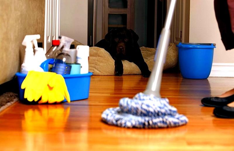 Наиболее-эффективные-средства-для-уборки-квартиры
