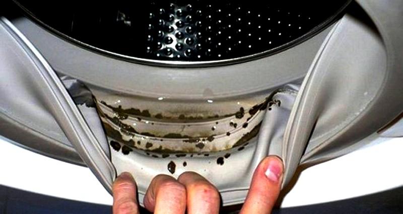 плесень-в-стиральной-машине