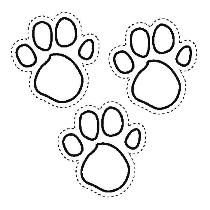 Шаблон собачьих следов