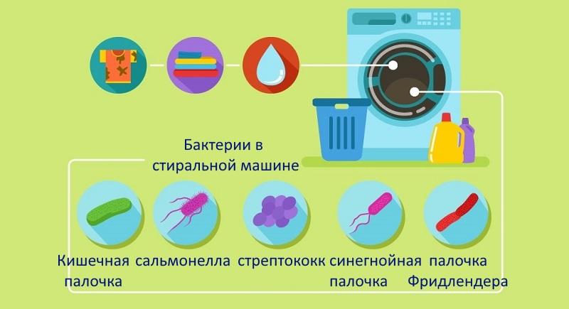 Бактерии в стиральной машине