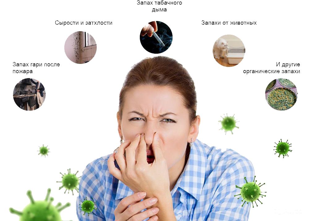 Причины появления неприятных запахов на мебели