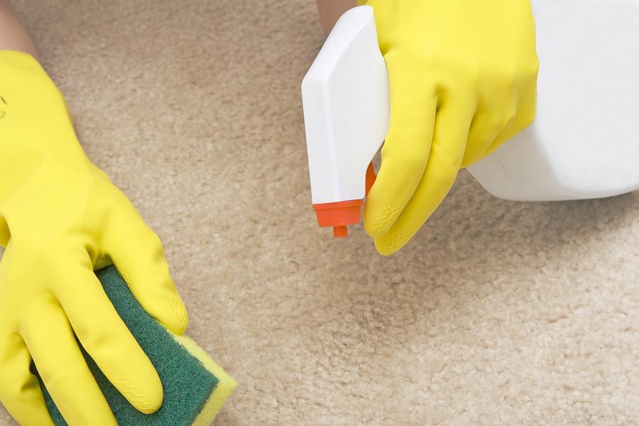 Избавится от неприятного запаха с дивана можно при помощи специальных средств с содержанием фунгицида