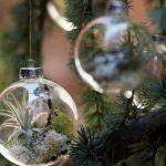 Фото 37: Живой мир в елочном шарике