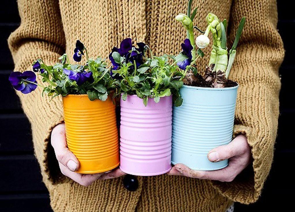 Если покрасить жестяные банки яркой краской, то они станут прекрасными цветочными горшками